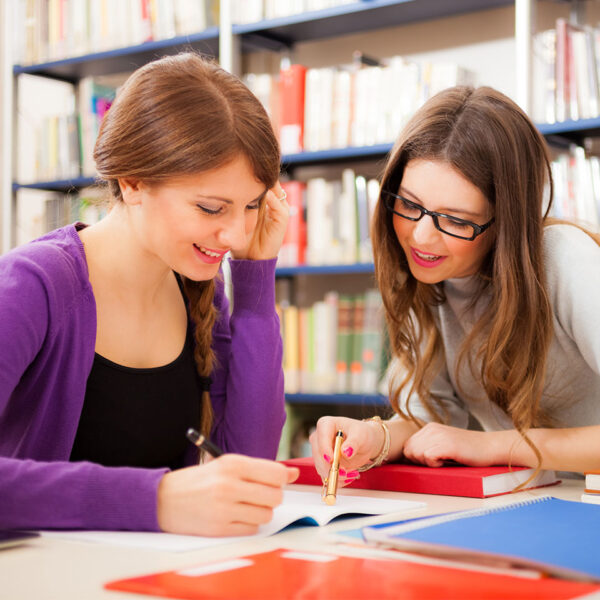Mewar University portfolio course 5